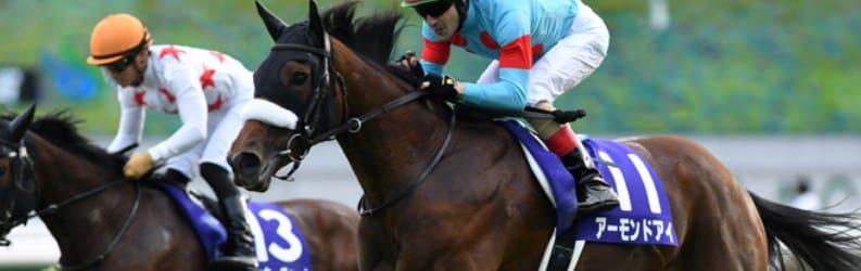 馬に関する競馬用語