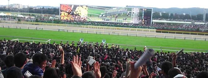 競馬開催日